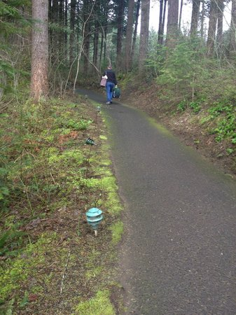 Skamania Lodge: Even the path to the parking lot is nice