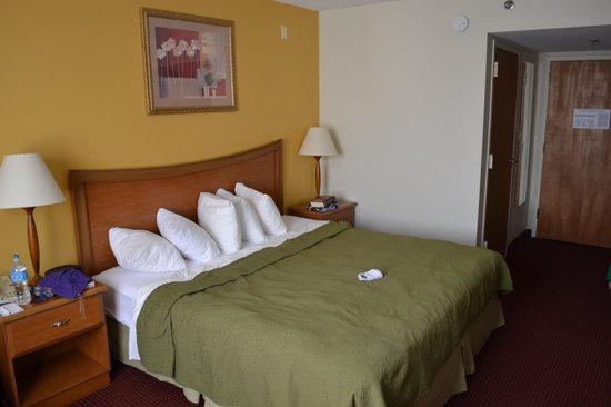 Quality Inn & Suites: Bedroom