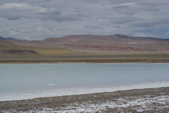 Antofagasta de la Sierra, Argentina: Laguna artificial del Salar