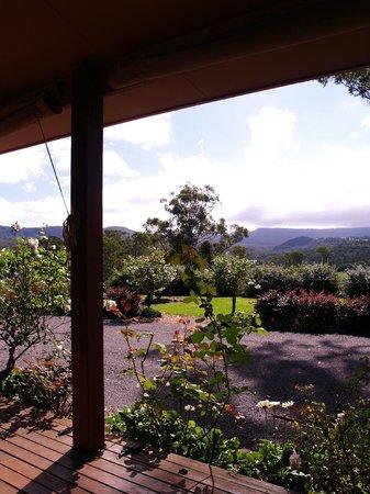 Acacia House: The deck