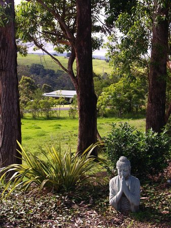 Acacia House: Beautiful views