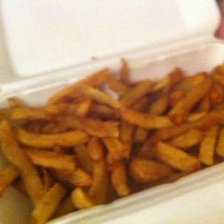 El Mayor Disgusting fries