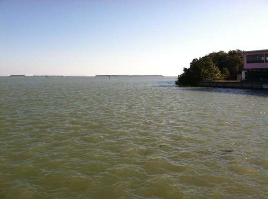 Flamingo Visitor Center: beautiful view of Florida Bay from center