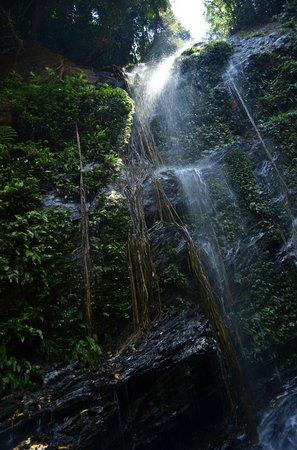 Shimoga, India: hidlumane falls