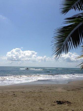 Esterillos Oeste, Kosta Rika: sirena