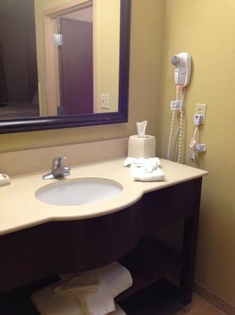 Hampton Inn and Suites Lake City: vanity area, clean and spacious
