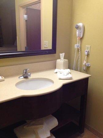 Hampton Inn and Suites Lake City : vanity area, clean and spacious