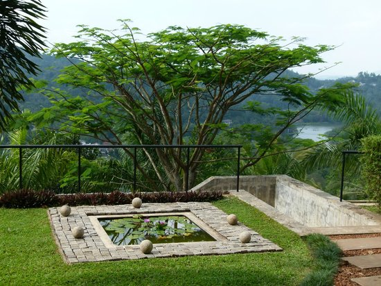 Baramba House : The lovely garden in front of the room