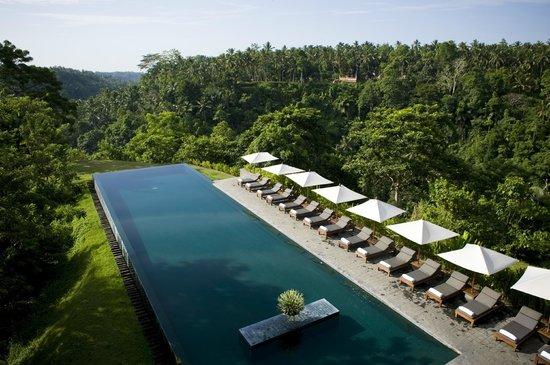 Alila Ubud Award-winning pool 03