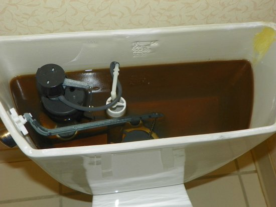 Quality Inn Fort Jackson: Commode with brown water