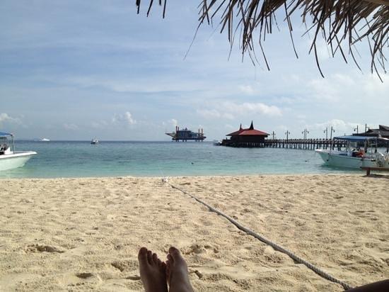 Scuba Junkie Hotel & Diving: the beach