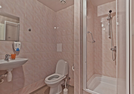 Hotel Westa: Shower and toilet in the room