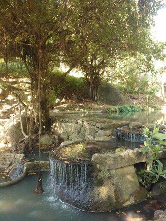 Phanom Bencha Mountain Resort: omgivelser