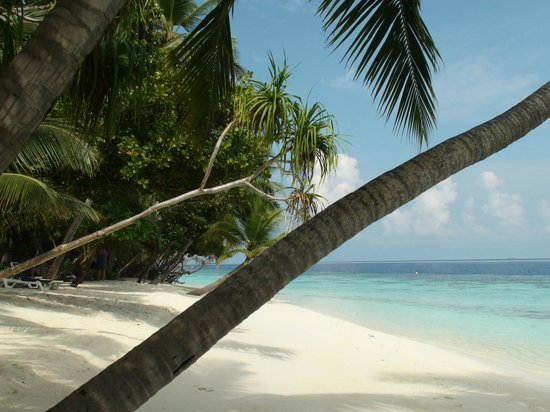 Vilamendhoo Island Resort & Spa: fantastic beach