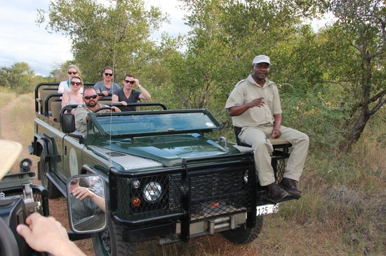 Motswari Private Game Reserve: Gamedrive