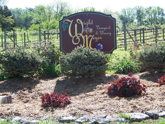 Shepherdsville, KY: Started the Vineyard in 1996