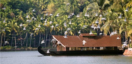 The Lalit Resort & Spa Bekal: Backwater