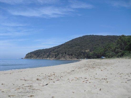 Camping Baia Verde: Cala Civetta