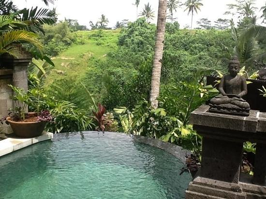 Bidadari Private Villas & Retreat: View from our villa