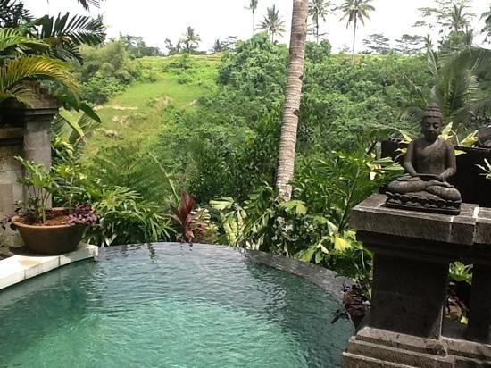Bidadari Private Villas & Retreat : View from our villa