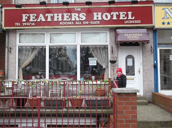 The Feathers: Outside