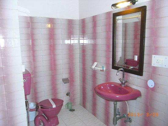 Hotel Maharani Plaza : バスルーム