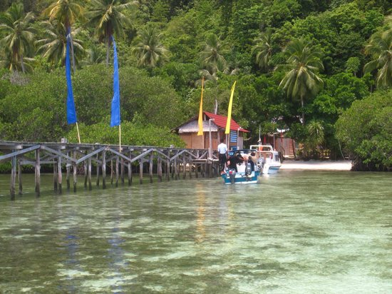 Raja Ampat Dive Lodge: View from the end of the boat pier