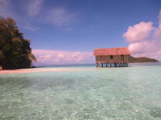 Mansuar Island, Indonesia: Our favorite spot to rest between morning dives was this small island