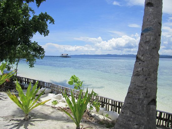 Raja Ampat Dive Lodge: View from our Bungalow