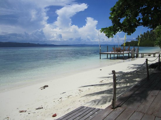 Raja Ampat Dive Lodge: View from the dive shop
