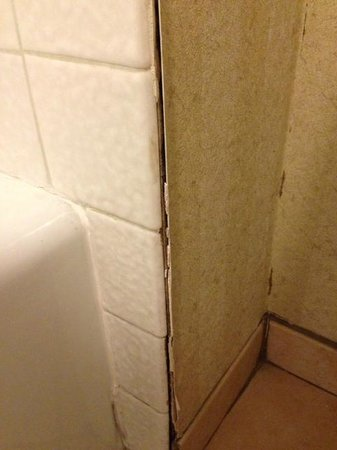Quality Inn & Suites Hermosa Beach: A bit worn down....