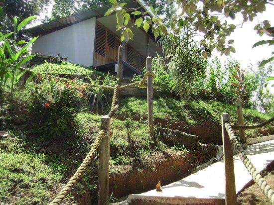 Cabinas Murillo: bungalow