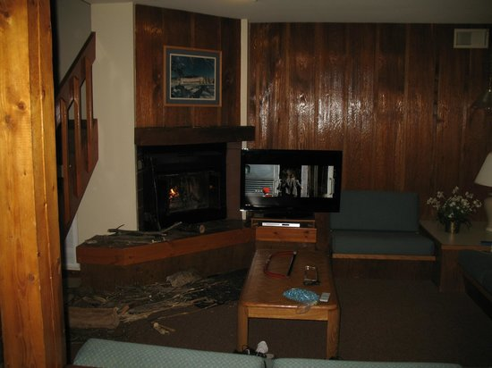 Shawnee River Village 2: living area had wood burning fireplace.  we brought a saw to cut the wood and matches.