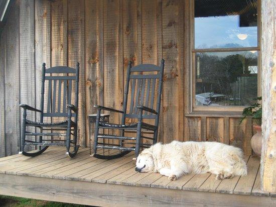 Cavender Creek Vineyards : Perfect Porch