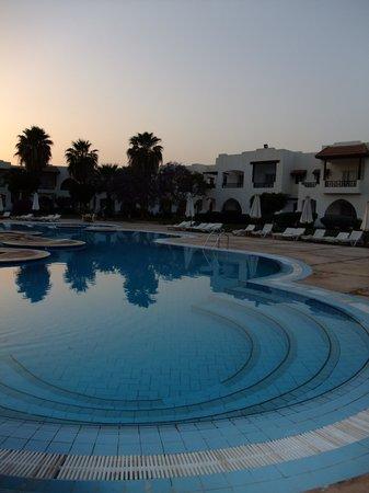 Poinciana Sharm Resort & Apartments: Pool view