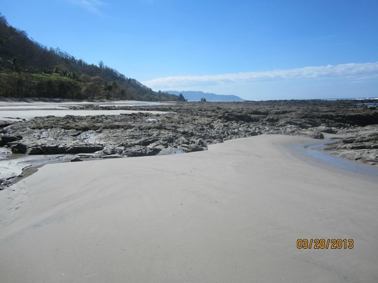 Pranamar Villas and Yoga Retreat: low tide, looking towards st. Theresa