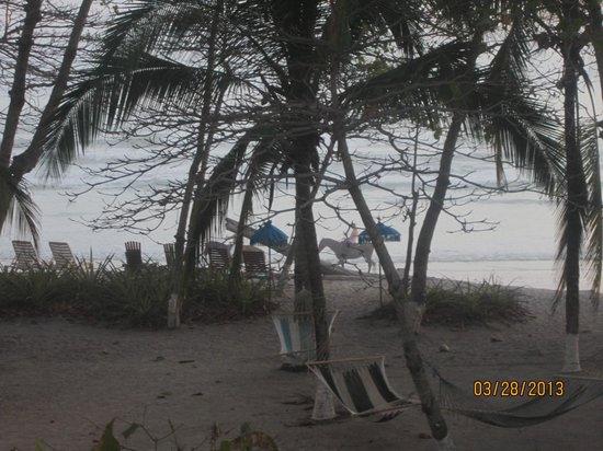 Pranamar Villas and Yoga Retreat: beach view from villa 1 . where's Talo?