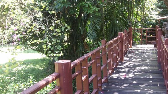 Suan Pakkad Palace Museum: promenade dans les airs de villas en villas