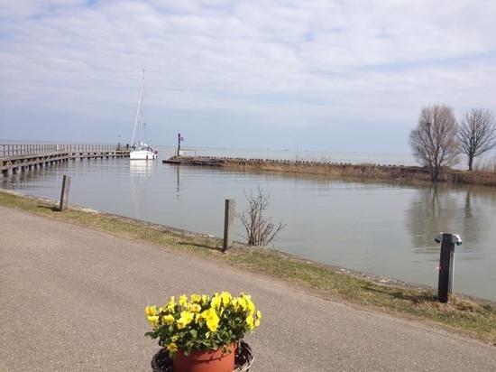 Uitzicht op de haven foto di strandbad paviljoen edam tripadvisor - Uitzicht op de tuinman ...