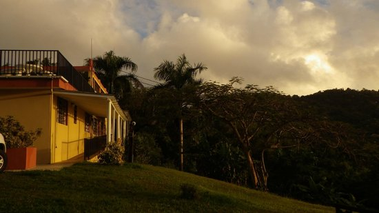 Ceiba Country Inn: Outdoors