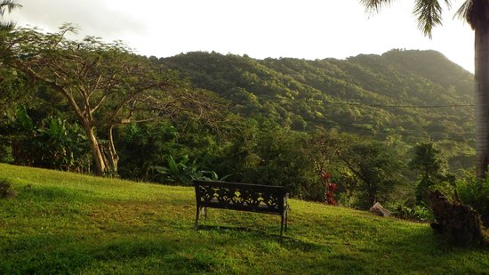 Ceiba Country Inn: Outside