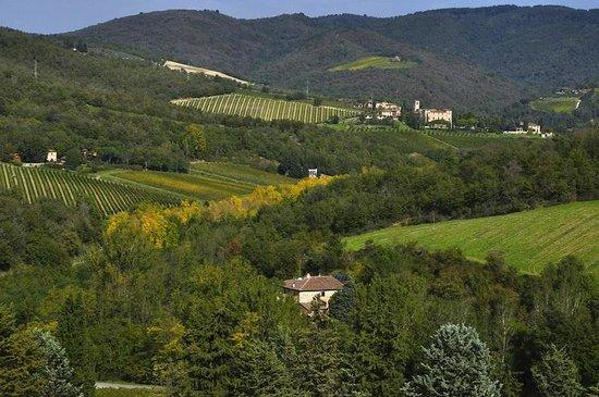 لا فونت دل تشيكو: Gaiole panorama dal castello di Meleto