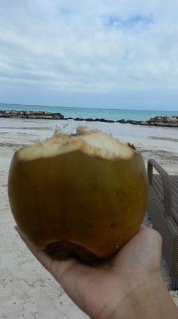 Sanctuary Cap Cana by AlSol: Coconut Water by The BeachSide