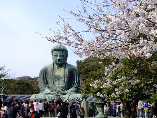 Kamakura Komachidori : Great Buddha,Kamakura,Japan