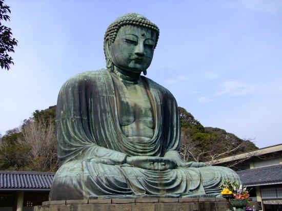 Kamakura Komachidori: Great Buddha,
