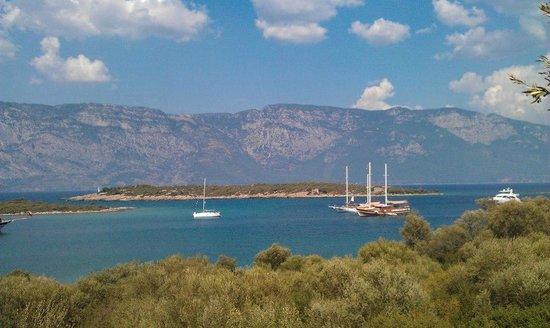 Cleopatra Island : вид на бухту
