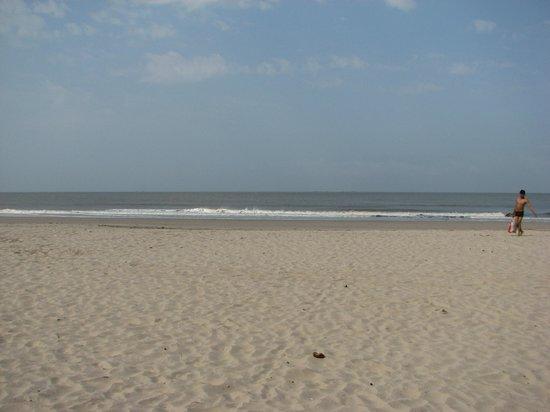 Kashid Beach: Clam sea