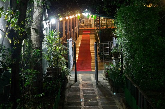 Highwinds, Guest House: The Red Carpet Leading to the Rooms