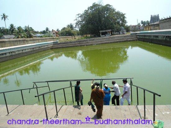 Swetharanyeswarar Temple: CHANDRA THEERTHAM