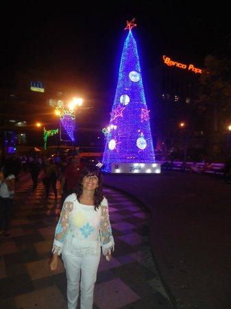 Plaza de la Cultura: Con ornamentación de Navidad